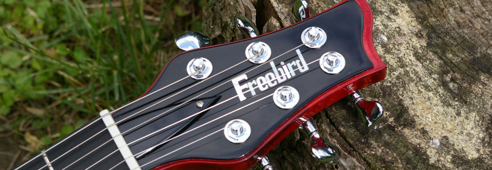 Freebird Guitars